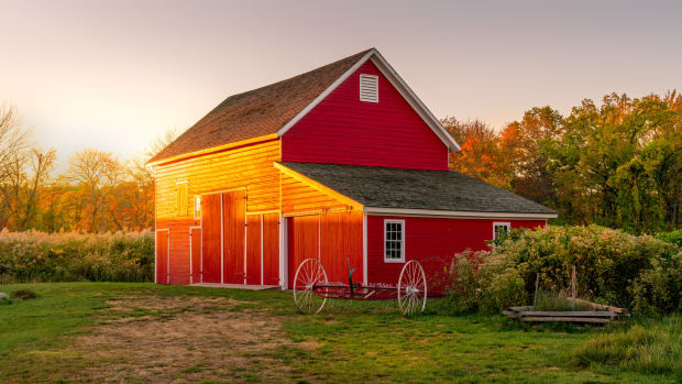 timber framing and barns buying guide
