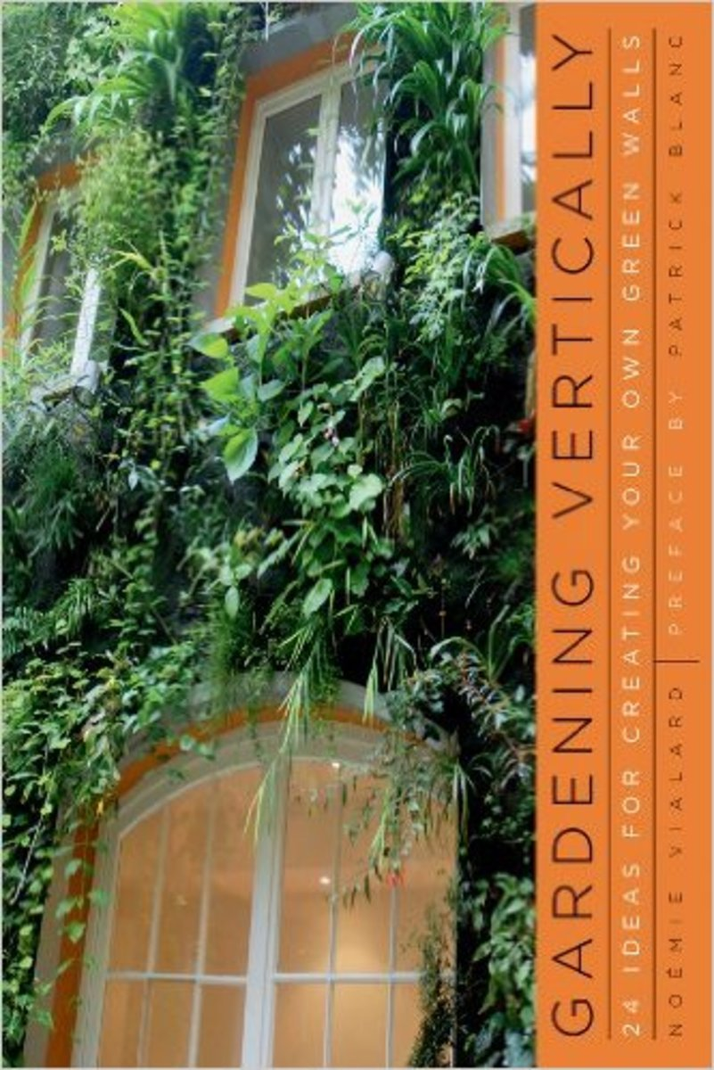 creating a vertical garden